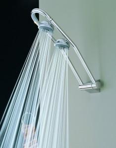 grohe freehander dual shower head