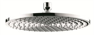hansgrohe raindance shower head